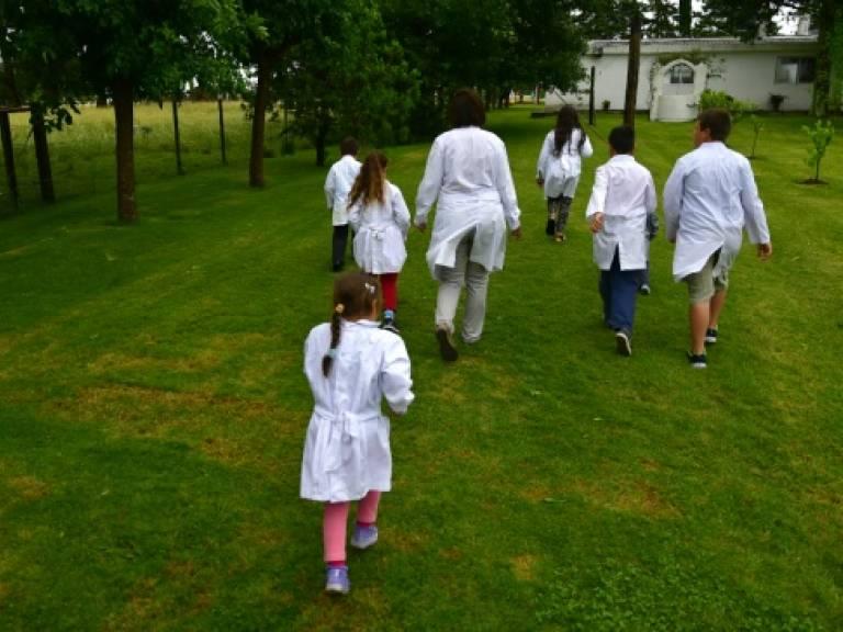 El regreso a las clases se realizará en etapas; primero las escuelas rurales